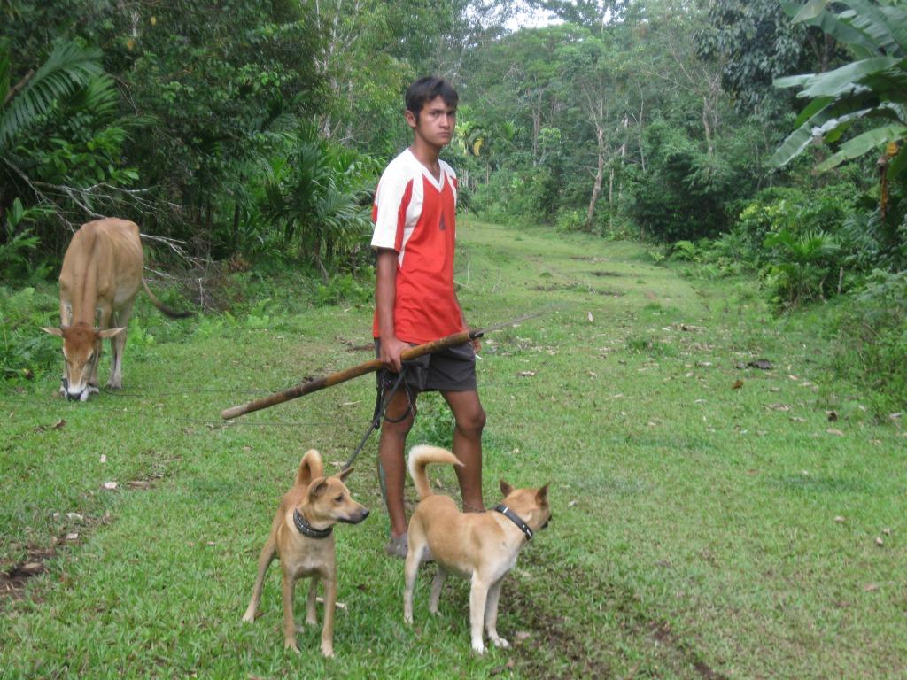 Pengelolaan Hutan Lestari (Foto.KpSHK)