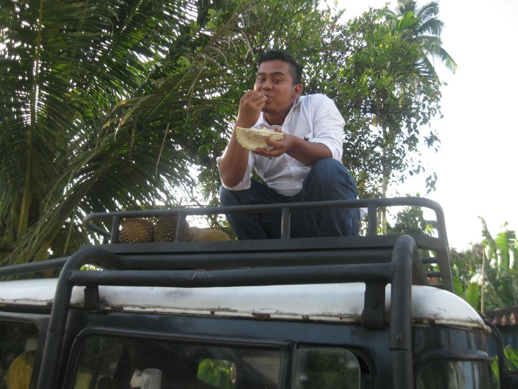 Robert yang asyik mencicipi manisnya durian hasil hutan sekitar Solok Selatan. Foto KpSHK