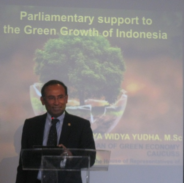 Satya Yudha, Ketua Kaukus Ekonomi Hijau DPR