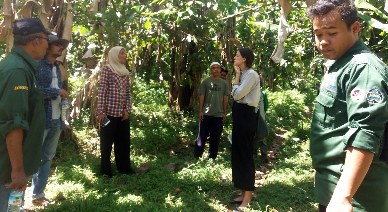 Kunjungan Stephanie (MCC) ke HKm Santong bersama H. Artim Yahya (Ketua HKm Santong) dan Tim Konsorsium KpSHK-KONSEPSI (Santong, 07/08/2017)