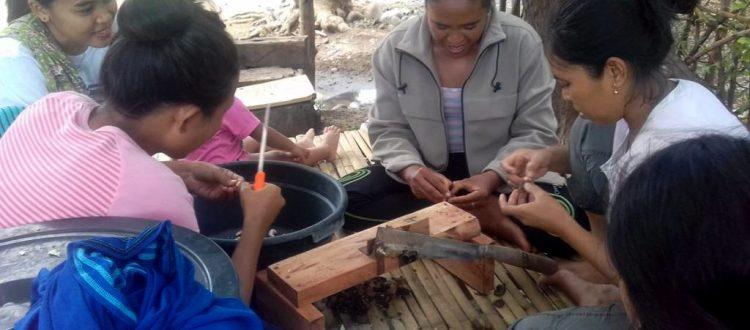 Praktek langsung pengupasan dan pengacipan biji mete oleh Kelompok Petani Perempuan Bangkit Bersama di Desa Sugian (Foto Bayu KpSHK. 19 Maret 2019).