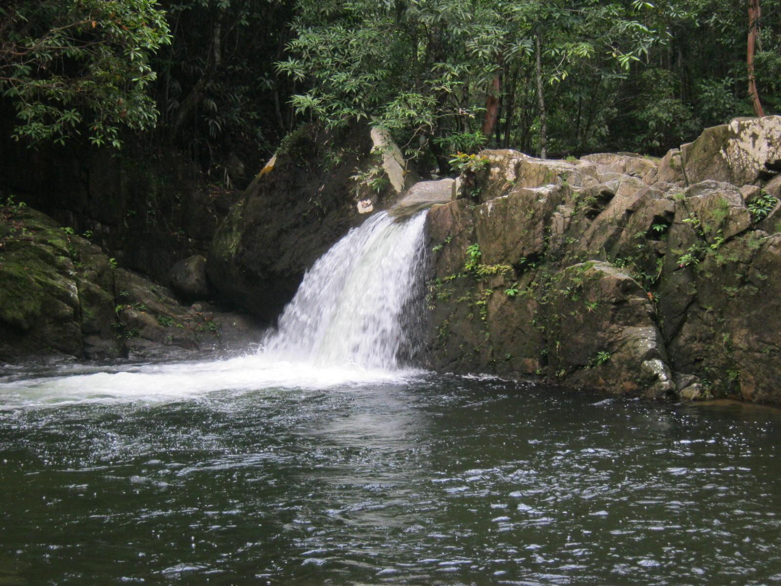 Hutan Lindung Gunung Naning identik dengan PDAM yang sejak tahun 2015 telah memberikan air minum bagi masyarakat Sekadau (Foto Ari/Nico, KpSHK/IMP).